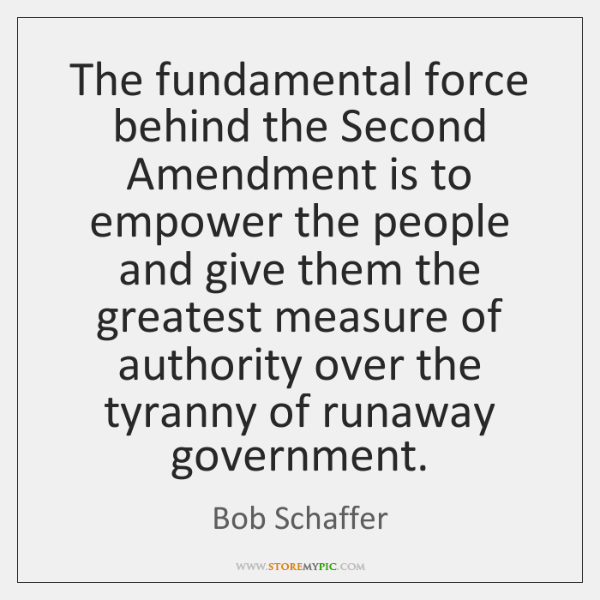 The fundamental force behind the Second Amendment is to empower the people ...