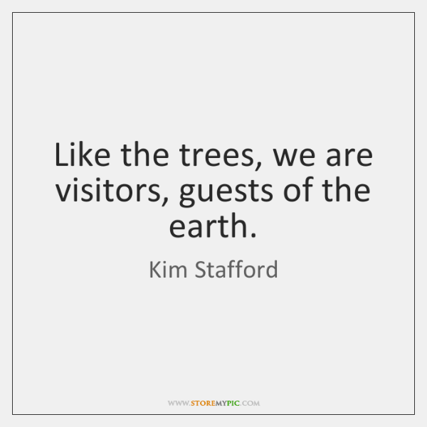 Like the trees, we are visitors, guests of the earth.