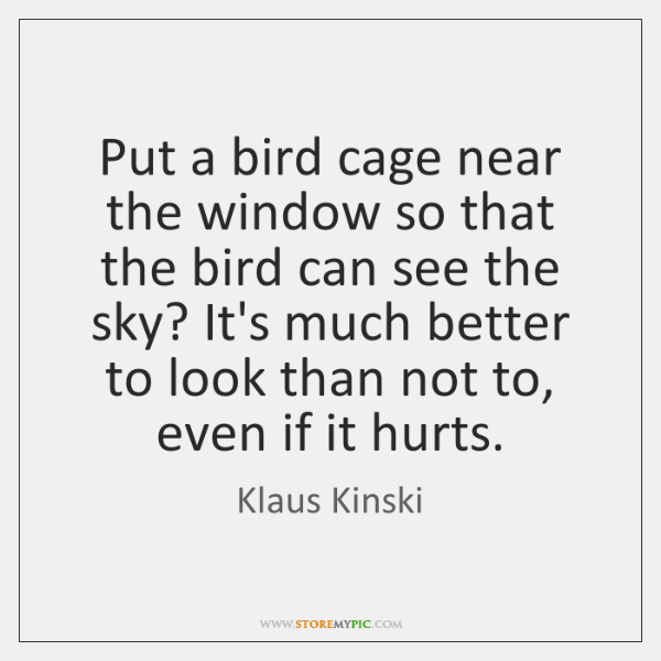 Put a bird cage near the window so that the bird can ...