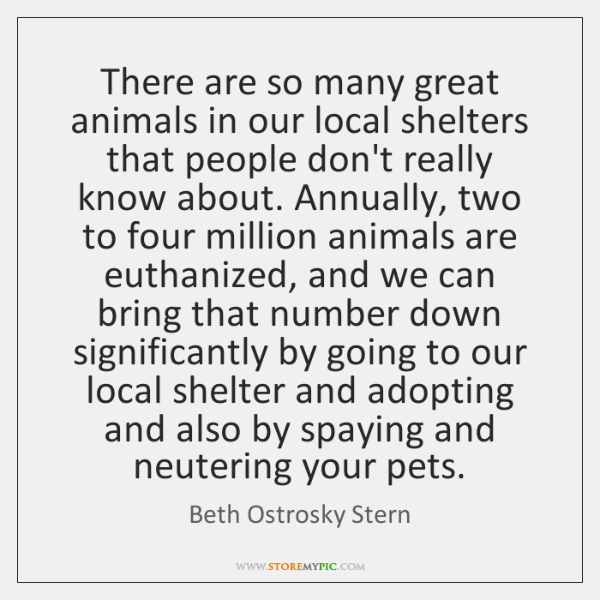 There are so many great animals in our local shelters that people ...