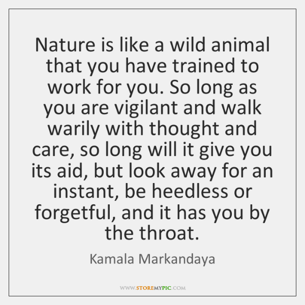 Nature is like a wild animal that you have trained to work ...