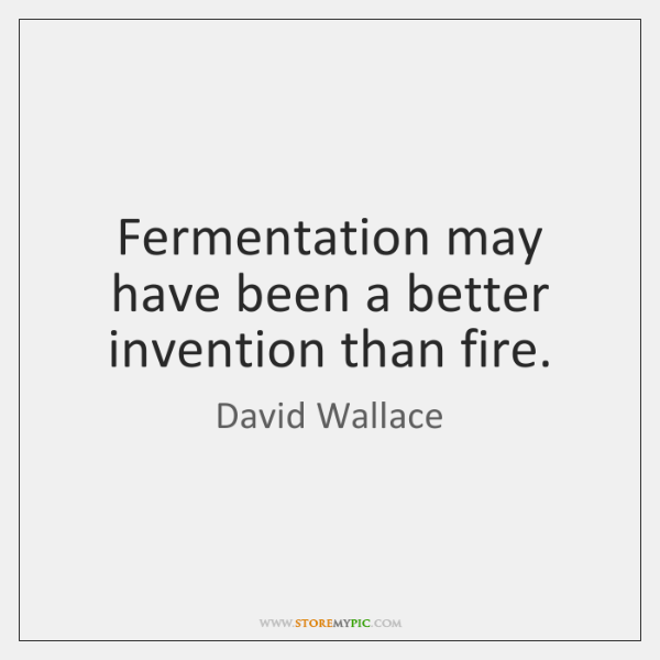 Fermentation may have been a better invention than fire.