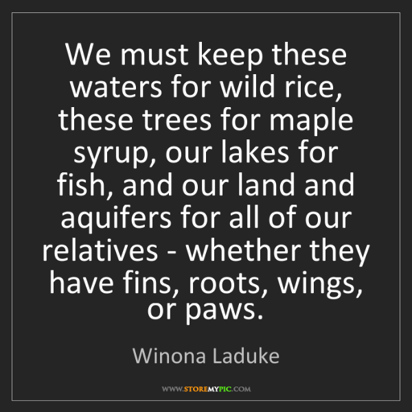 Winona Laduke: We must keep these waters for wild rice, these trees...