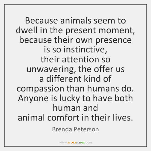Because animals seem to dwell in the present moment,   because their own ...