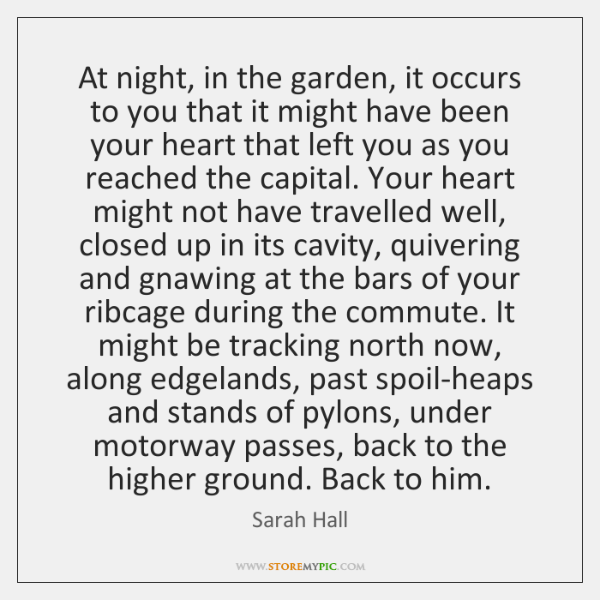 At night, in the garden, it occurs to you that it might ...
