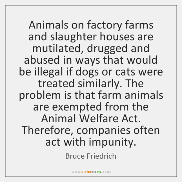 Animals on factory farms and slaughter houses are mutilated, drugged and abused ...