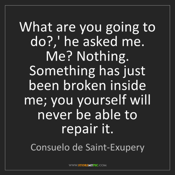 Consuelo de Saint-Exupery: What are you going to do?,' he asked me. Me? Nothing....
