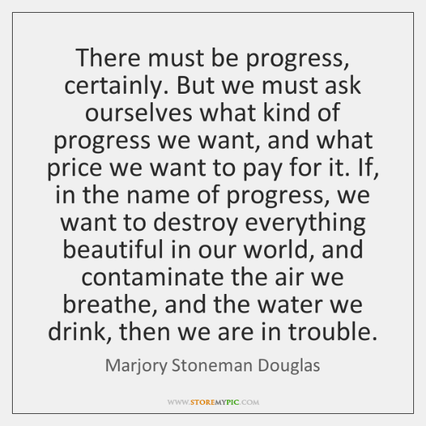 There must be progress, certainly. But we must ask ourselves what kind ...