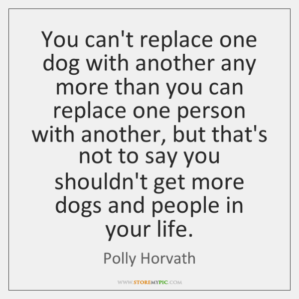 You can't replace one dog with another any more than you can ...