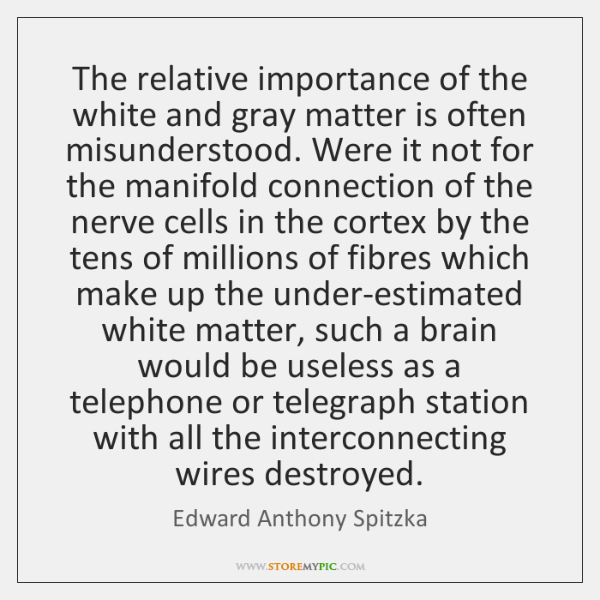 The relative importance of the white and gray matter is often misunderstood. ...