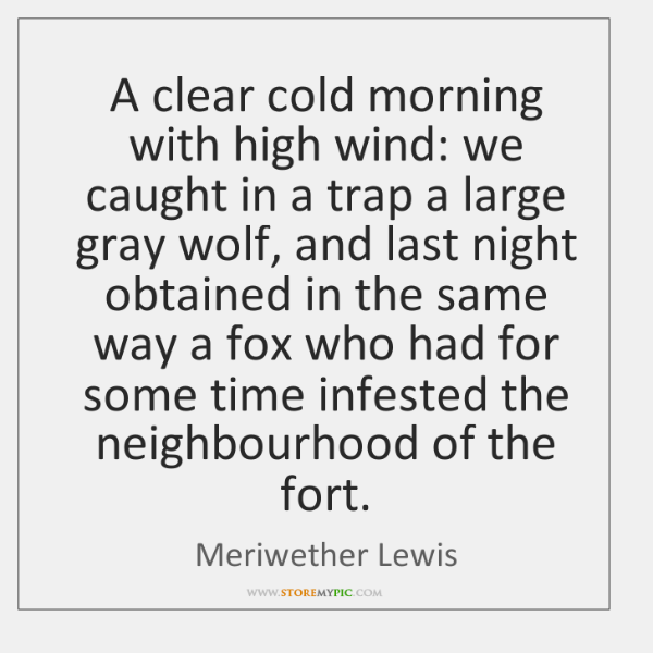 A clear cold morning with high wind: we caught in a trap ...