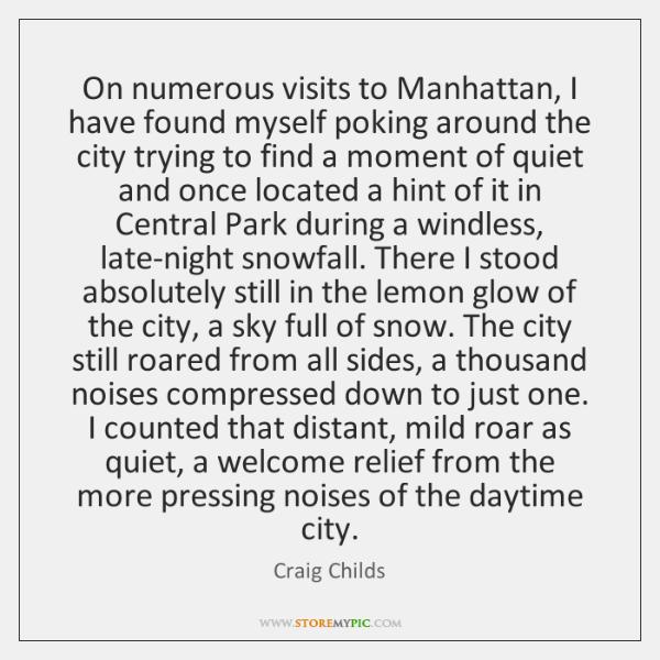 On numerous visits to Manhattan, I have found myself poking around the ...