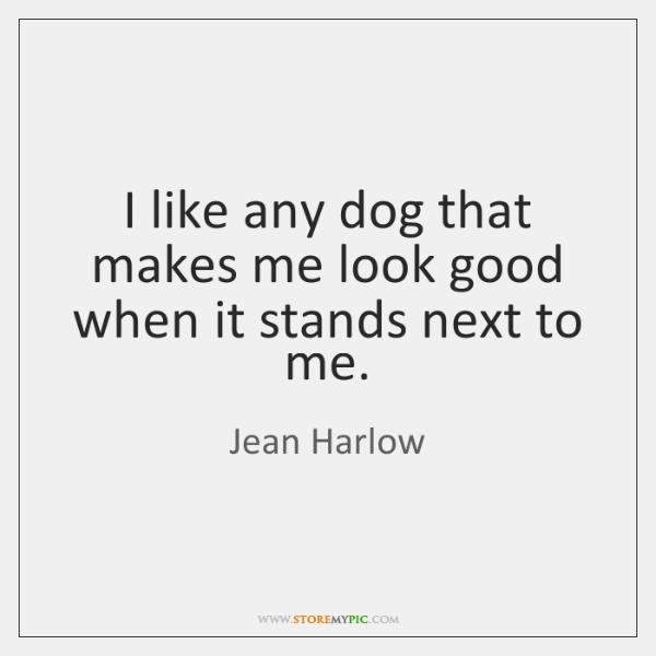 I like any dog that makes me look good when it stands ...