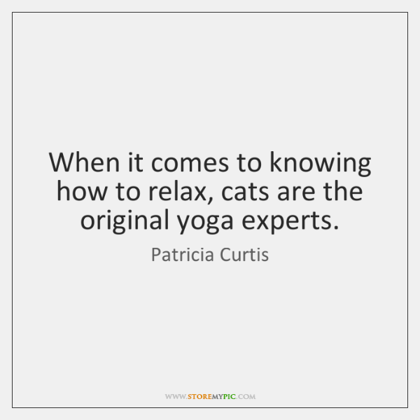 When it comes to knowing how to relax, cats are the original ...