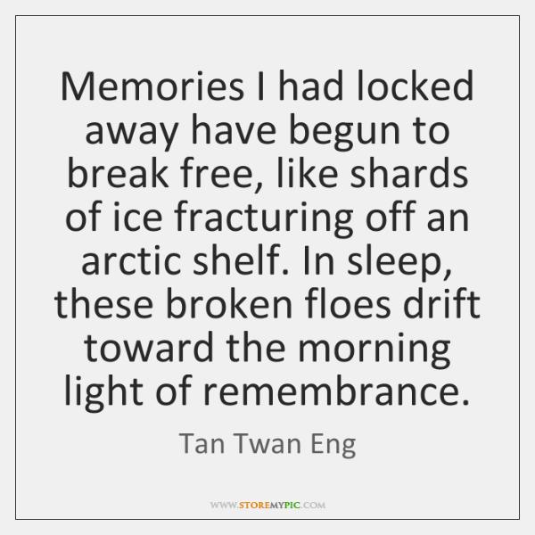 Memories I had locked away have begun to break free, like shards ...