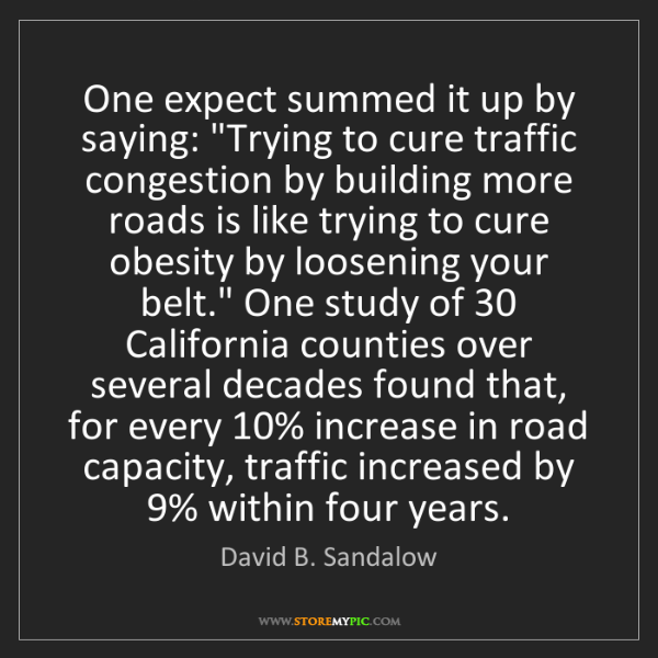 """David B. Sandalow: One expect summed it up by saying: """"Trying to cure traffic..."""