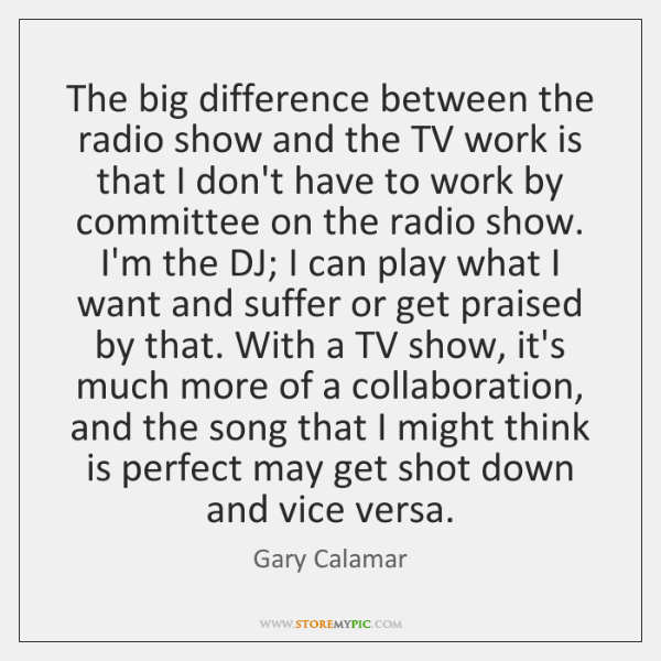 The big difference between the radio show and the TV work is ...