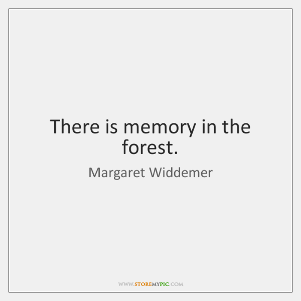 There is memory in the forest.