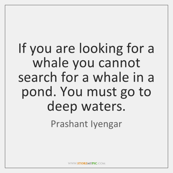 If you are looking for a whale you cannot search for a ...