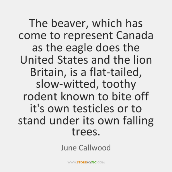 The beaver, which has come to represent Canada as the eagle does ...
