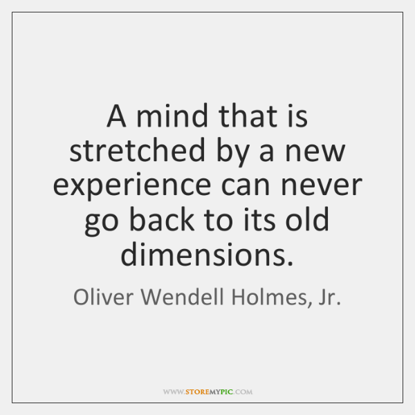 A mind that is stretched by a new experience can never go ...