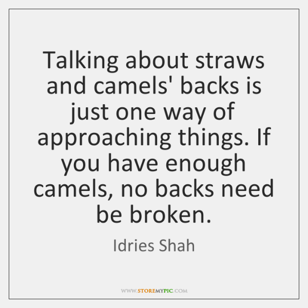 Talking about straws and camels' backs is just one way of approaching ...