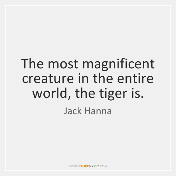 The most magnificent creature in the entire world, the tiger is.