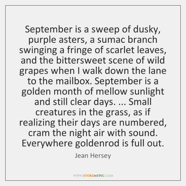September is a sweep of dusky, purple asters, a sumac branch swinging ...