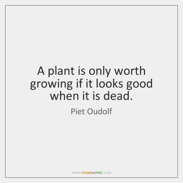 A plant is only worth growing if it looks good when it ...