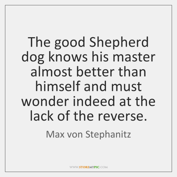 The good Shepherd dog knows his master almost better than himself and ...