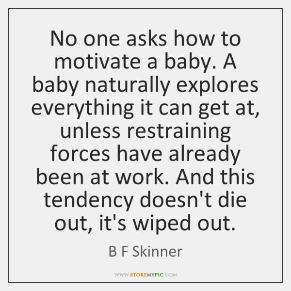 bf skinner motivation