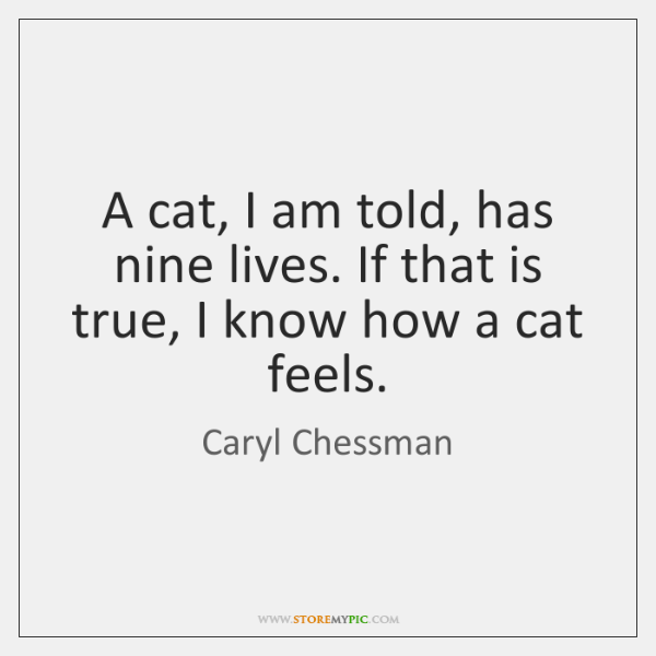 A cat, I am told, has nine lives. If that is true, ...