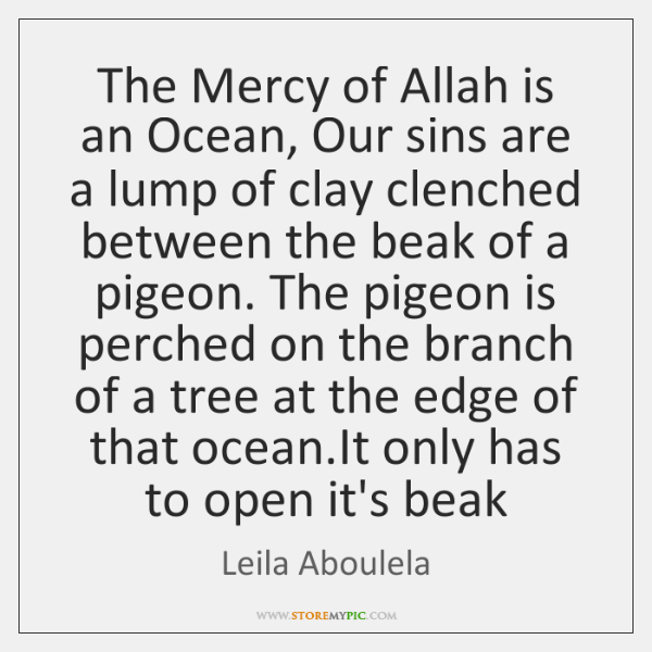 The Mercy of Allah is an Ocean, Our sins are a lump ...
