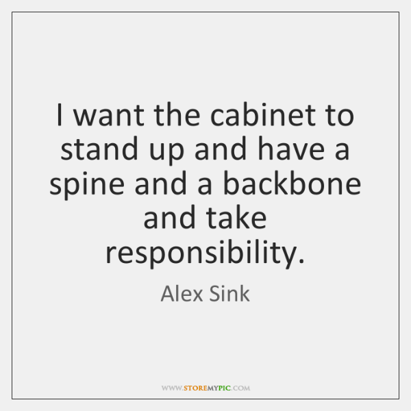 I want the cabinet to stand up and have a spine and ...