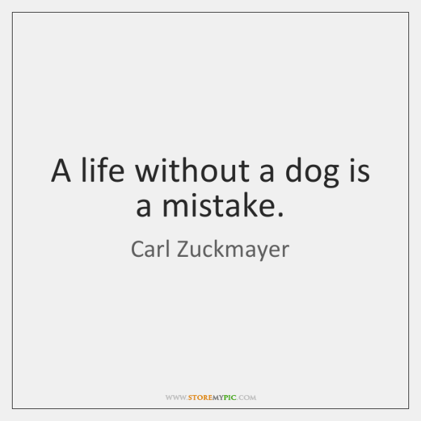 A life without a dog is a mistake.