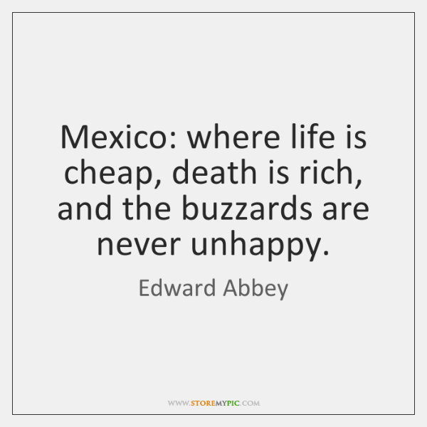 Mexico: where life is cheap, death is rich, and the buzzards are ...