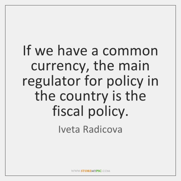 If we have a common currency, the main regulator for policy in ...