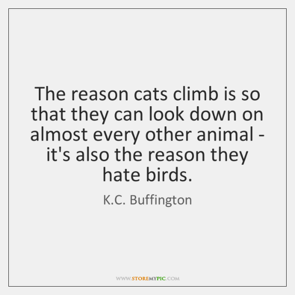 The reason cats climb is so that they can look down on ...