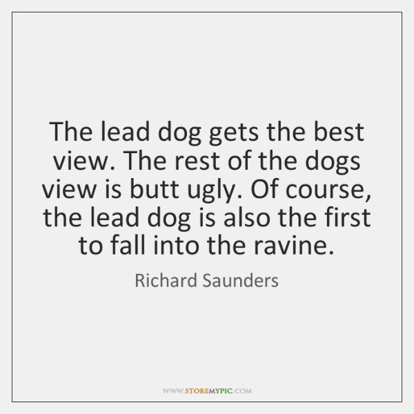 The lead dog gets the best view. The rest of the dogs ...