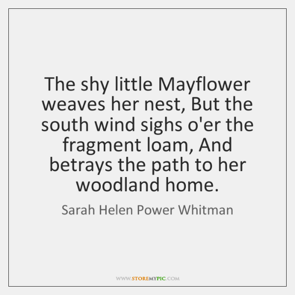 The shy little Mayflower weaves her nest, But the south wind sighs ...