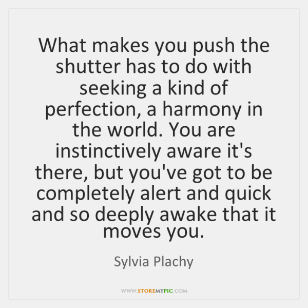 What makes you push the shutter has to do with seeking a ...