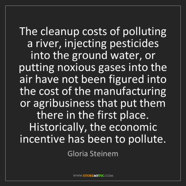 Gloria Steinem: The cleanup costs of polluting a river, injecting pesticides...