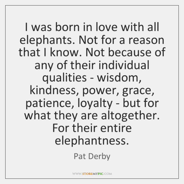 I was born in love with all elephants. Not for a reason ...