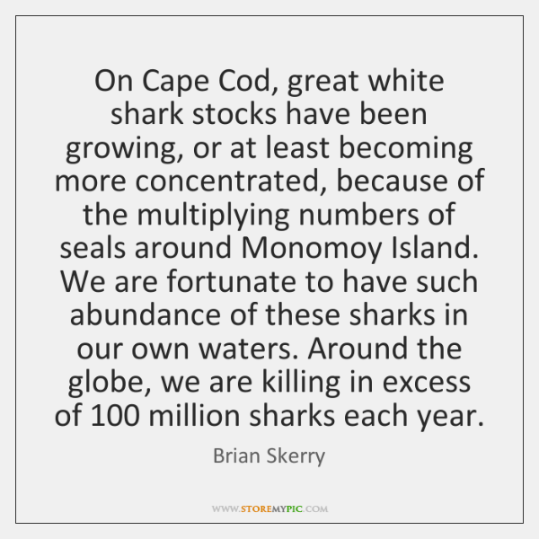 On Cape Cod, great white shark stocks have been growing, or at ...