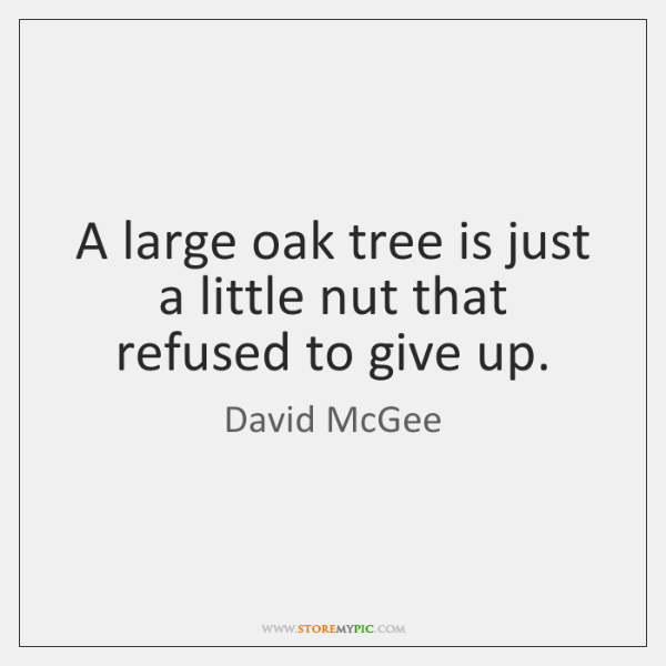 A large oak tree is just a little nut that refused to ...