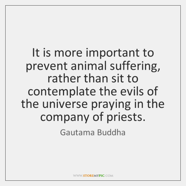 It is more important to prevent animal suffering, rather than sit to ...