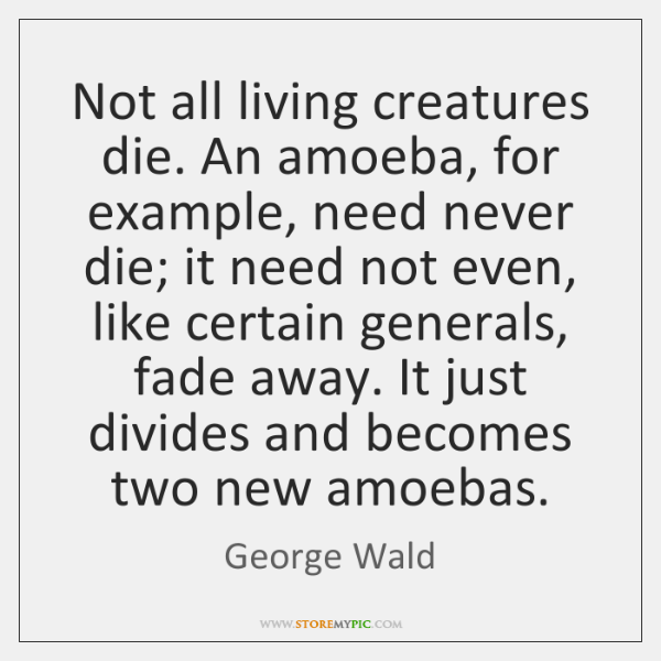 Not all living creatures die. An amoeba, for example, need never die; ...
