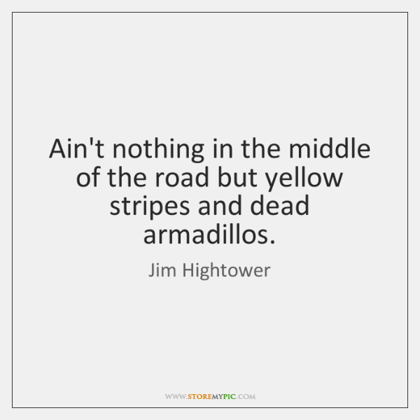 a literary analysis of theres nothing in the middle of the road but yellow stripes and dead armadill A book review of jim hightower's there's nothing in the middle of the road but yellow stripes and dead armadillos.