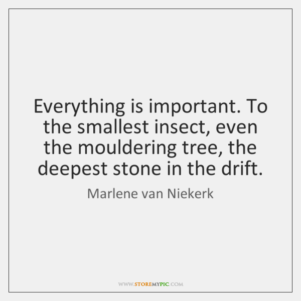 Everything is important. To the smallest insect, even the mouldering tree, the ...