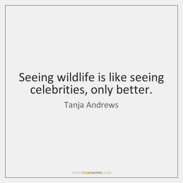 Seeing wildlife is like seeing celebrities, only better.